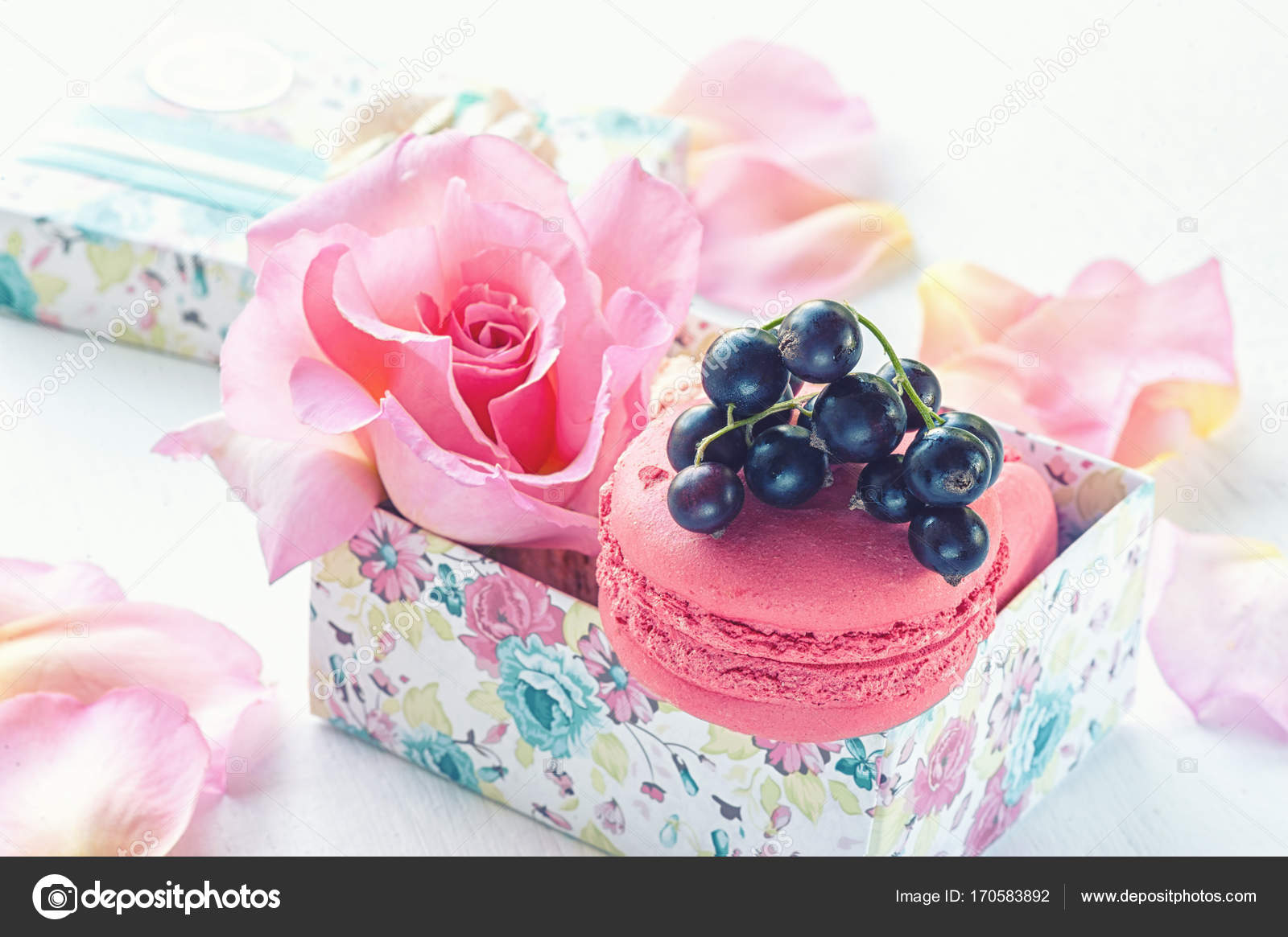 Macarons with black currant in a gift box on the background of macarons with black currant in a gift box on the background of beautiful flowers roses izmirmasajfo