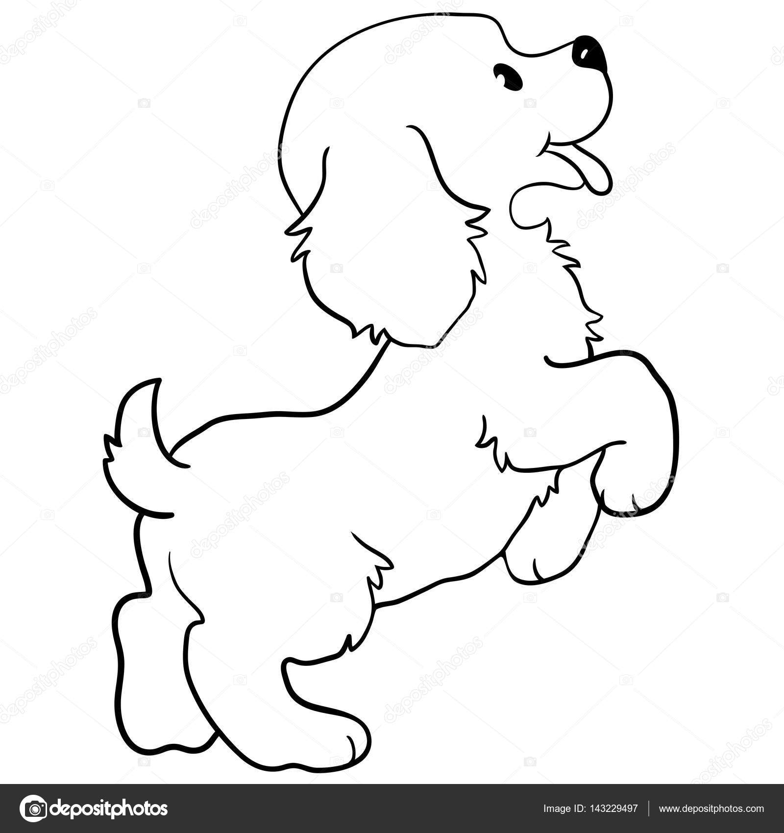 Dog Contour Cute Vector Dog Coloring Isolated On White