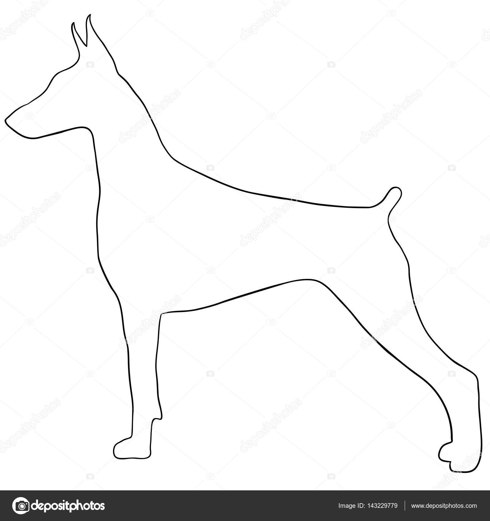 Köpek Contourcute Vektör Köpek Boyama Beyaz Arka Plan üzerinde