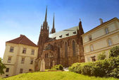 Photo Cathedral of St. Peter and Paul in Brno, Czech Republic