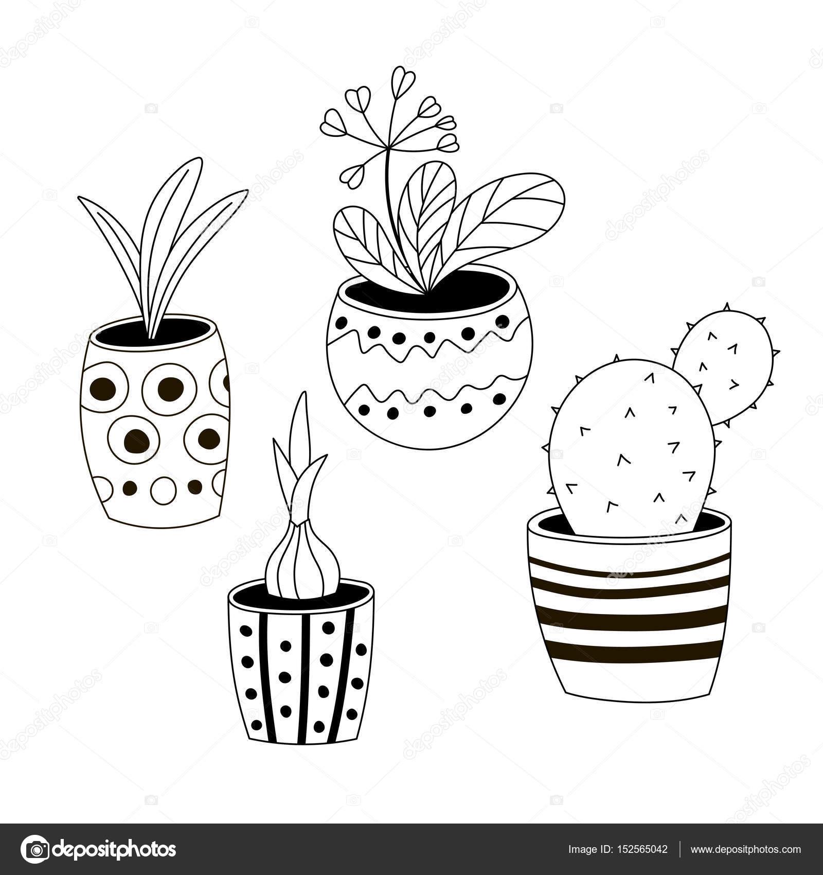 Dört Renksiz Saksı Bitkileri Elle çizilmiş Bir Tarzda Kümesi Stok
