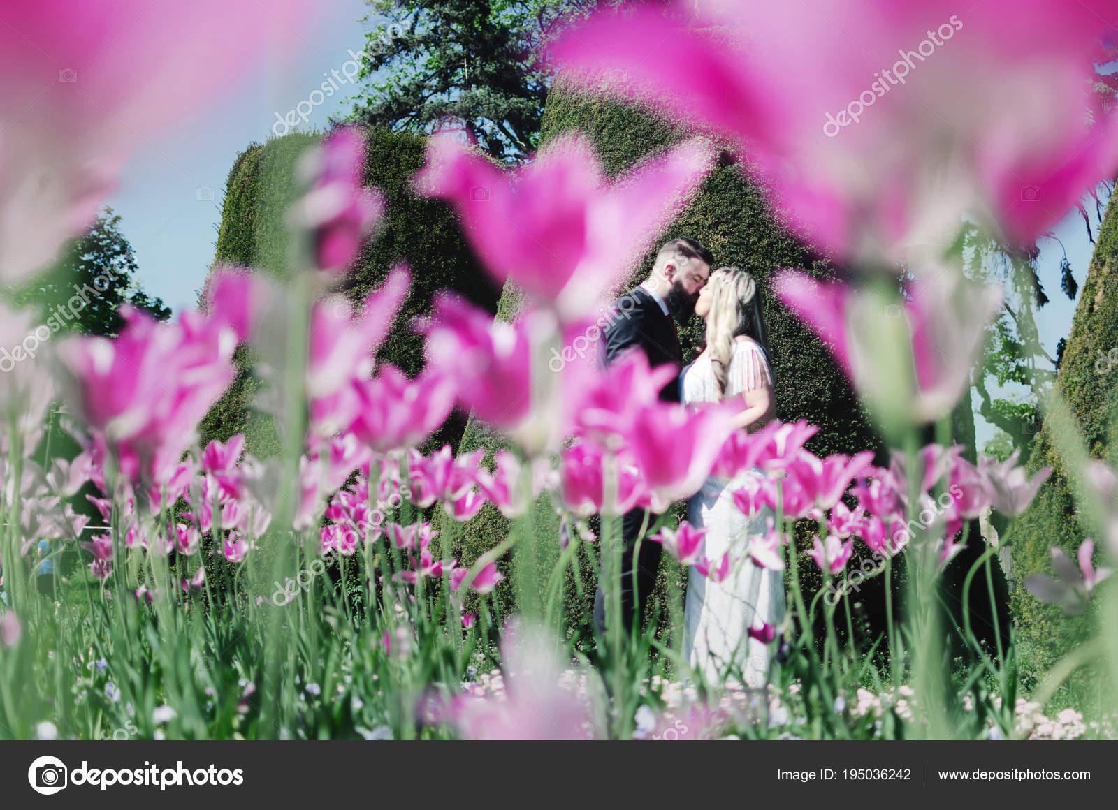Novios Felices Campo Amapolas Color Rosa Hermosa Novia Joven Vestido ...