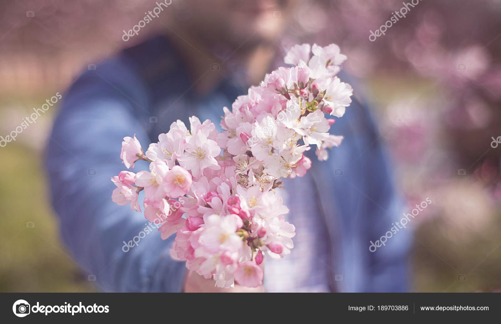 květ třešeň seznamka