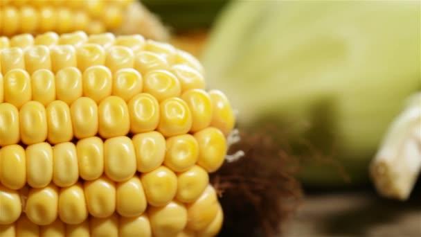 Zblízka pohybu podél čerstvé sladké kukuřičné klasy na stole