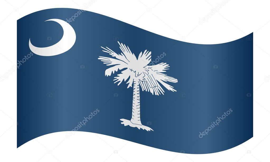 Flag Of South Carolina Waving On White Background Stock Vector