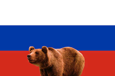 Flag of Russia and russian bear, patriotic symbols