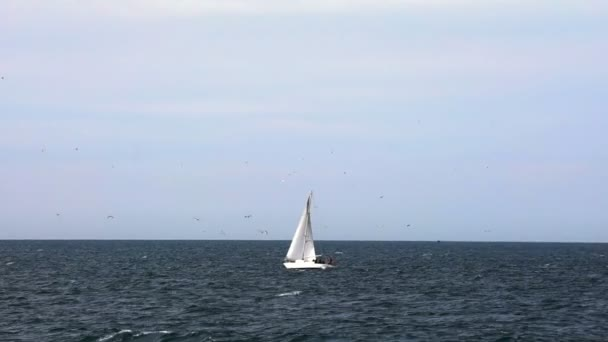 Jedna plachetnice na moře obzor
