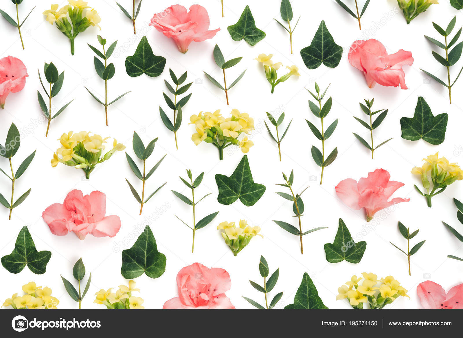 Spring Pattern Pink Yellow Flowers Green Leaves White Background