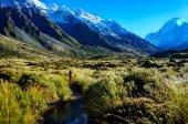 Pista della Valle di Hooker, Monte Cook, Nuova Zelanda