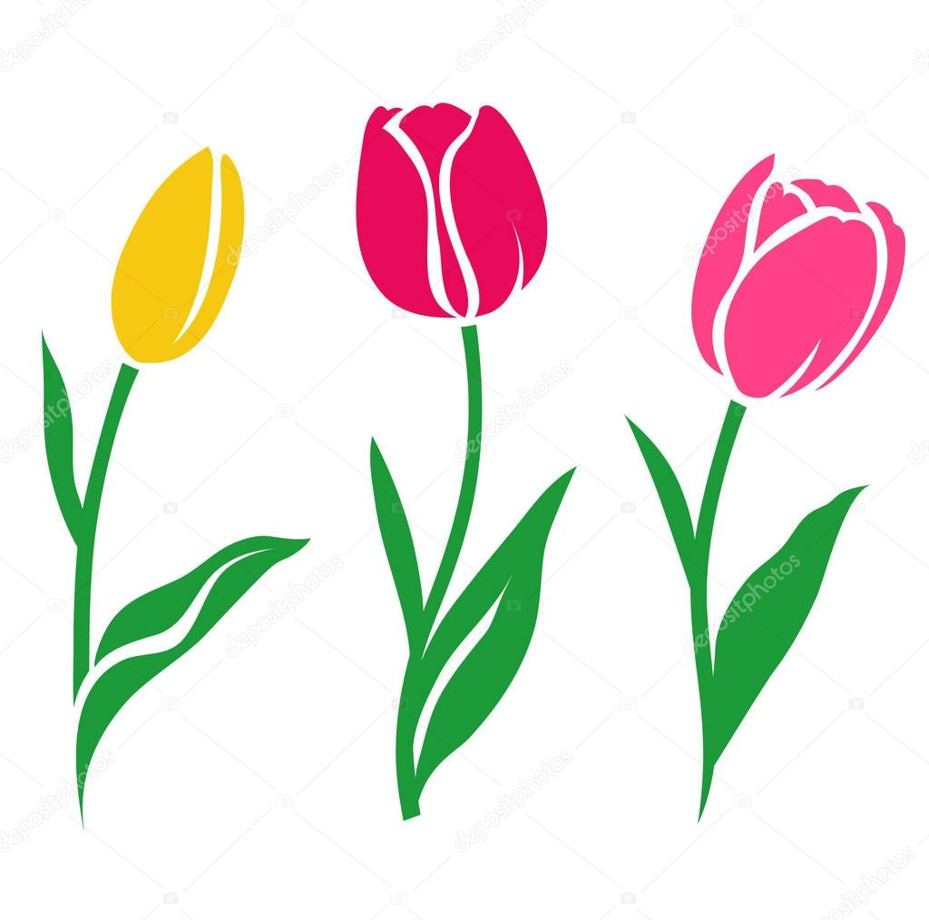 Set of colorful tulip silhouettes