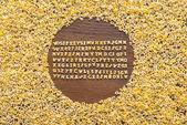 písmena abecedy makarony