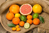 Fotografie Fresh citrus fruits