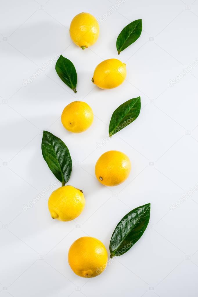fresh lemons and leaves