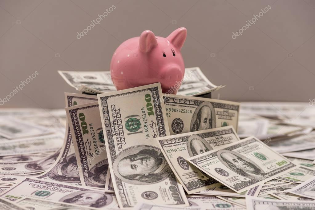 Dollar banknotes and piggy bank