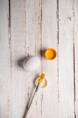 Chicken egg and paint
