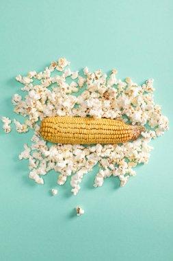 corn and popcorn kernels