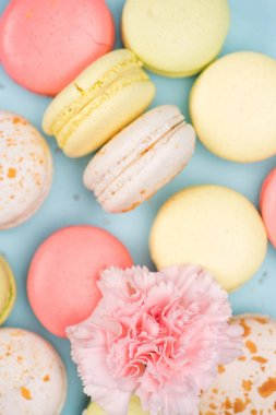 macarons background with pink flower