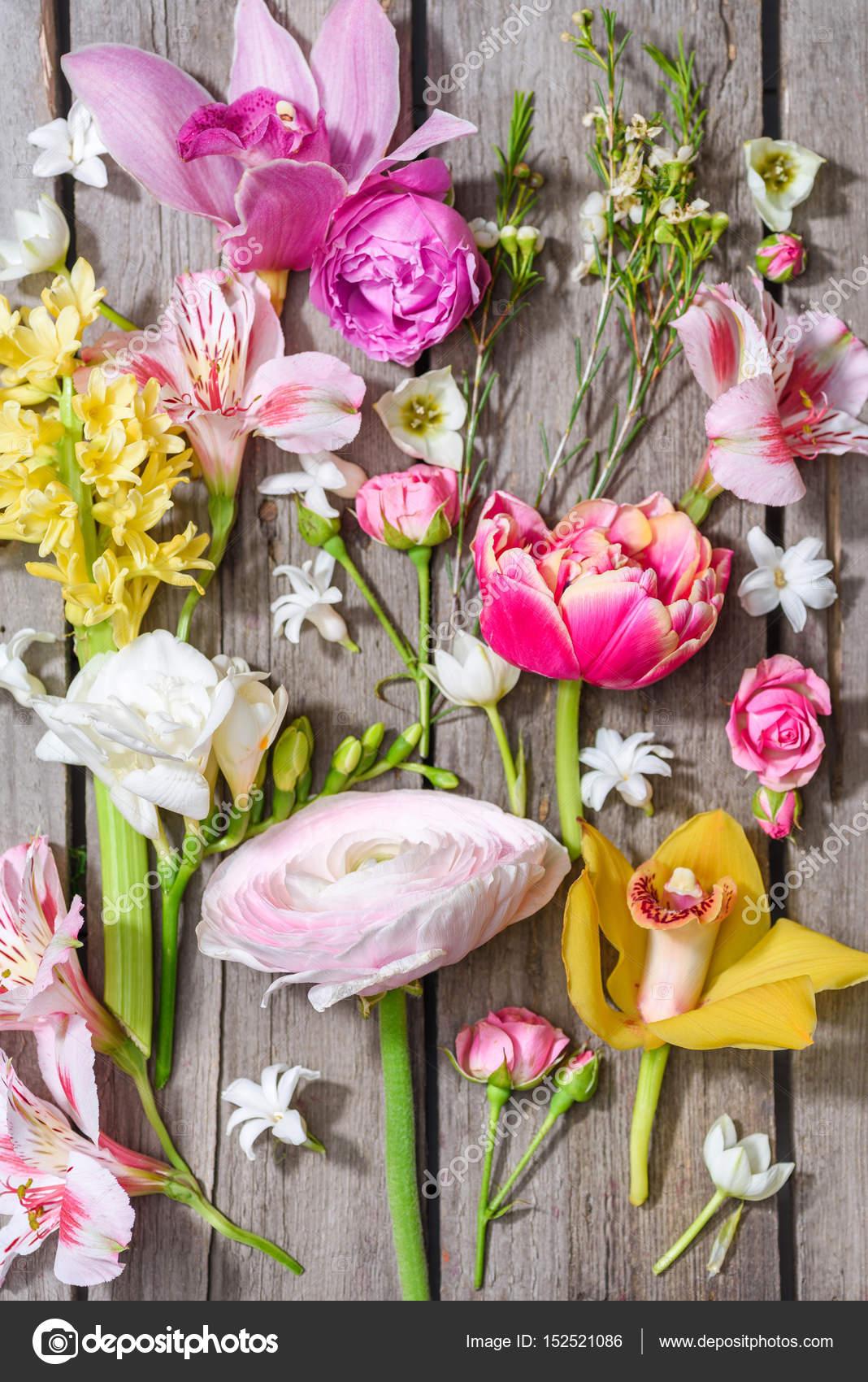 Beautiful Blooming Flowers Stock Photo Kklimenko 152521086