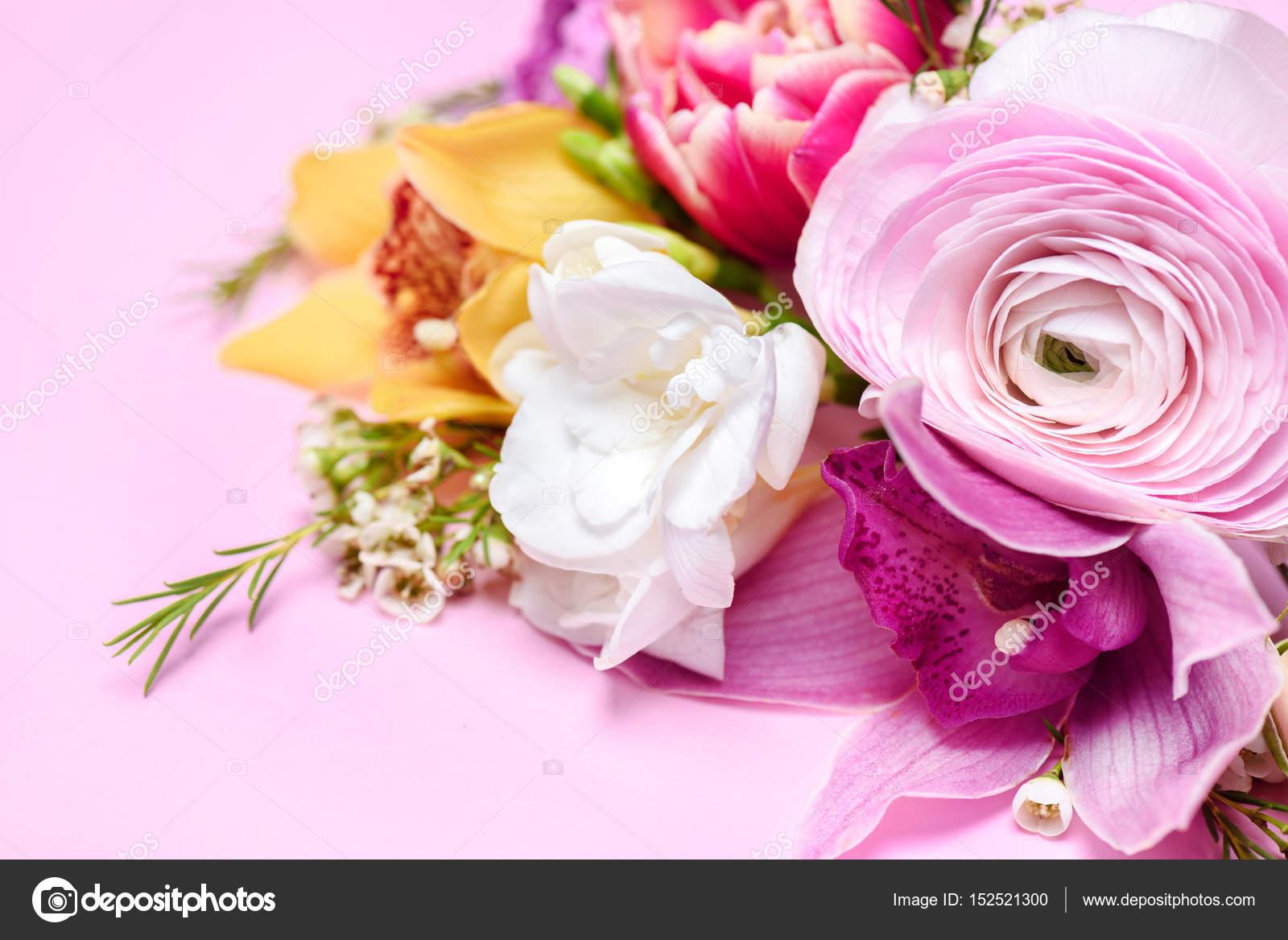 Beautiful Blooming Flowers Stock Photo Kklimenko 152521300