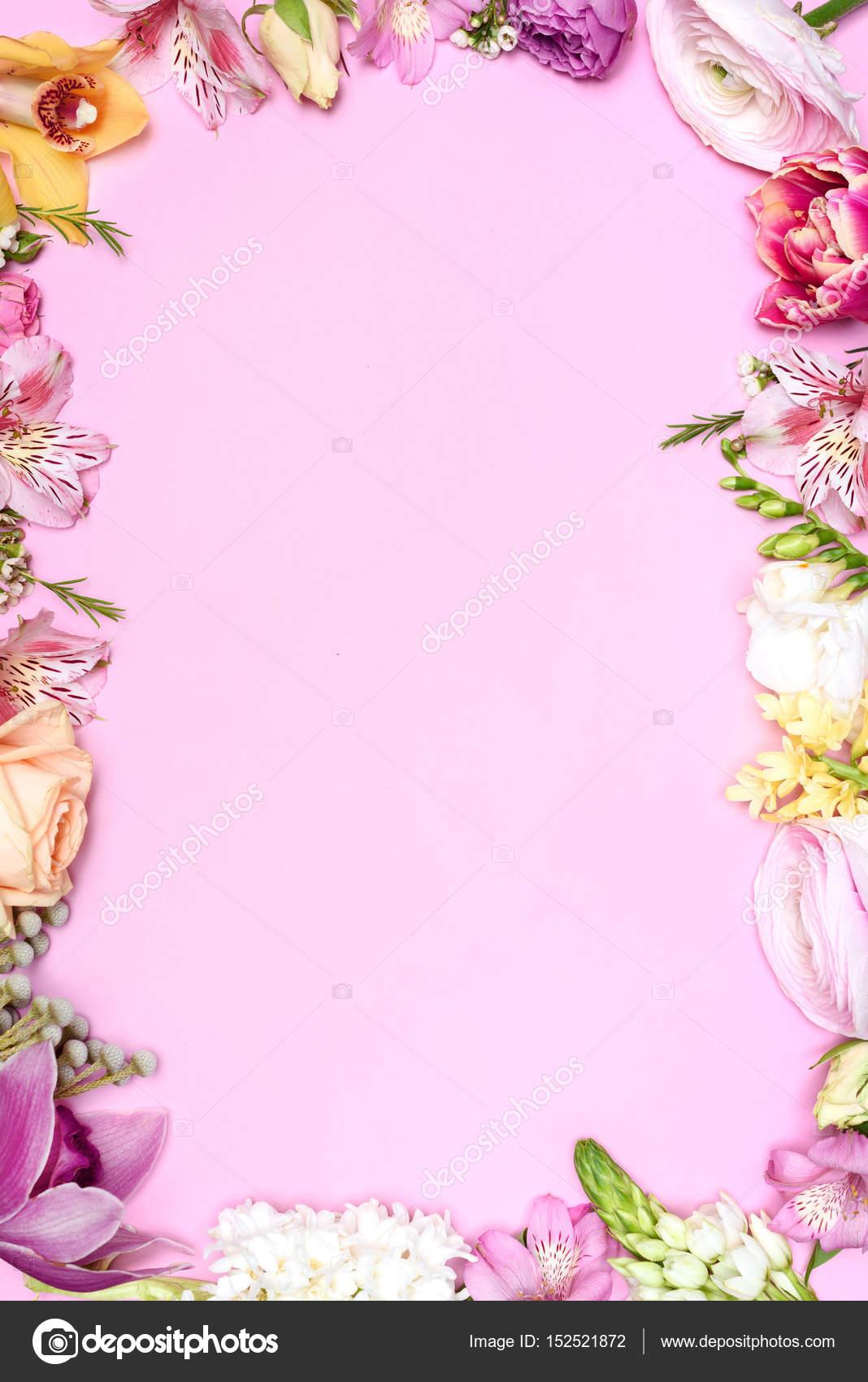 flores hermosas Fotos de Stock KKlimenko 152521872