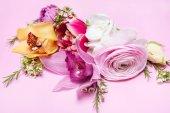 schöne blühende Blumen