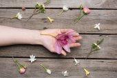 Blumen und menschliche Hand