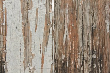 Beautiful wooden background. Vintage Background with Fissures on the Tree.