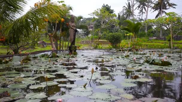 See mit Seerosen und Springbrunnen