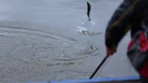 Ugrás a horogra. Halász rúd