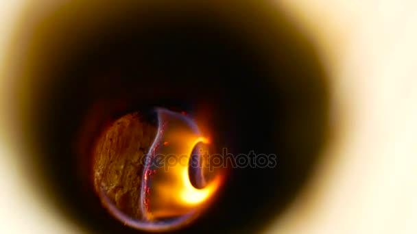 Tűz lángja, a napló belül