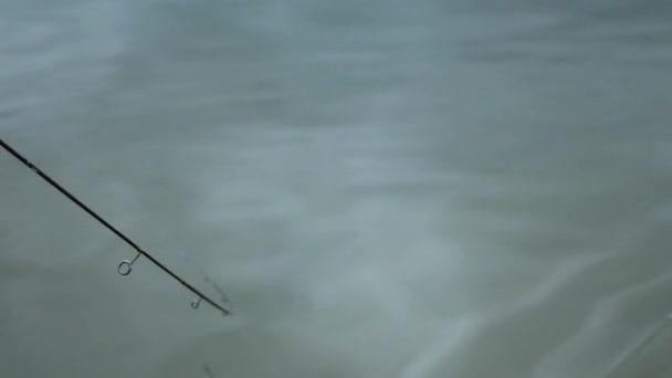 Hal a horgot. Horgászbot akcióban