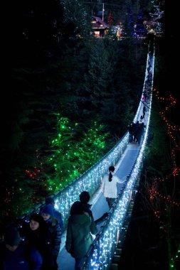 Capilano Suspension bridge lighted up at night