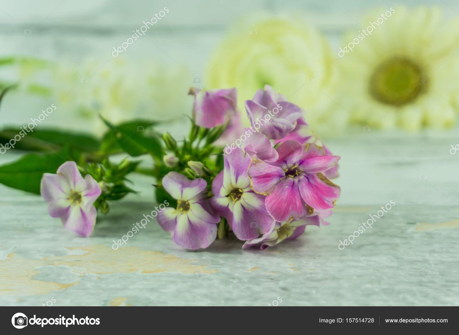 Flores de verano coloreado sobre una rústica mesa de madera — Foto ...