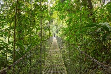 Suspended bridge, Costa Rica