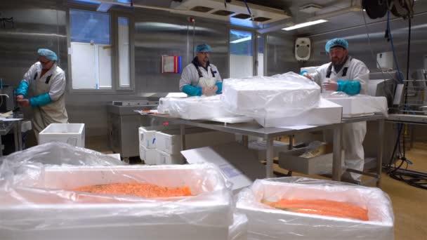 Muži jsou balení lososa v továrně mořské plody.