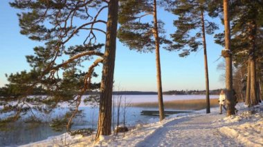Winter sport for all ages - nordic walking Active people hiking in snowy forest