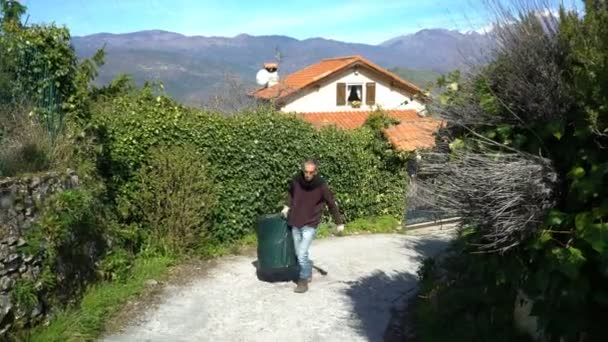 Collecting rosemary in the Alps.