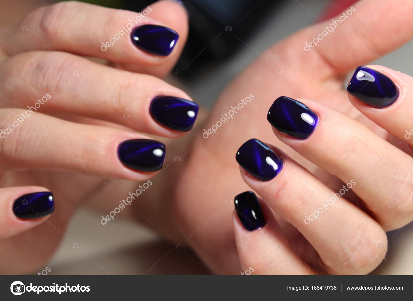 manicure gel with cat lacquer eye — Stock Photo © SmirMaxStock ...
