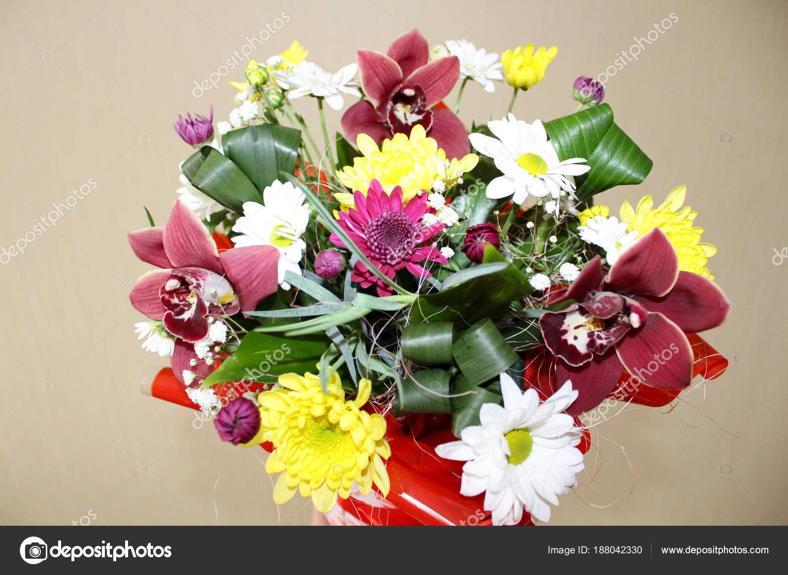 Beautiful flowers of a orchid in a box stock photo smirmaxstock gift box with beautiful orchid flowers for girls photo by smirmaxstock izmirmasajfo