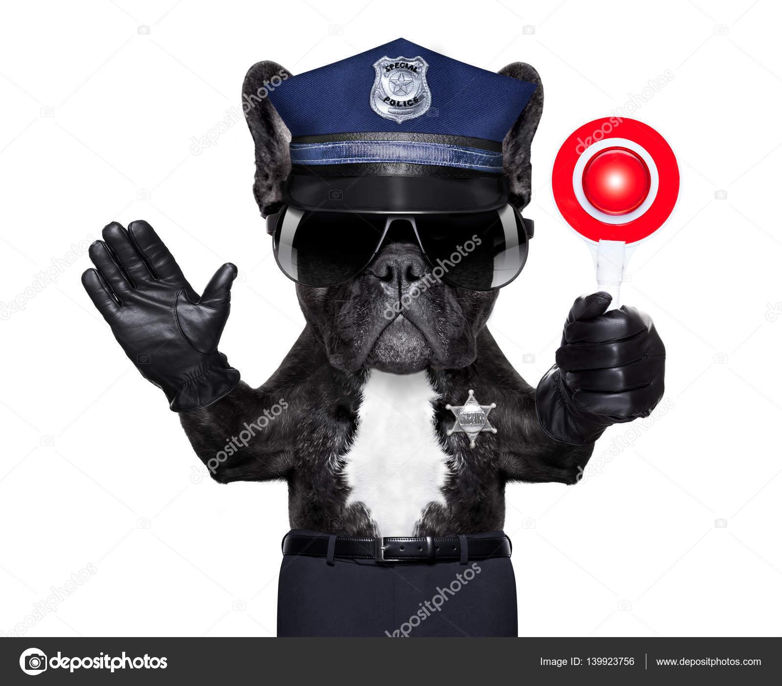 Hund Polizei Polizist mit Stop-Schild — Stockfoto © damedeeso #139923756