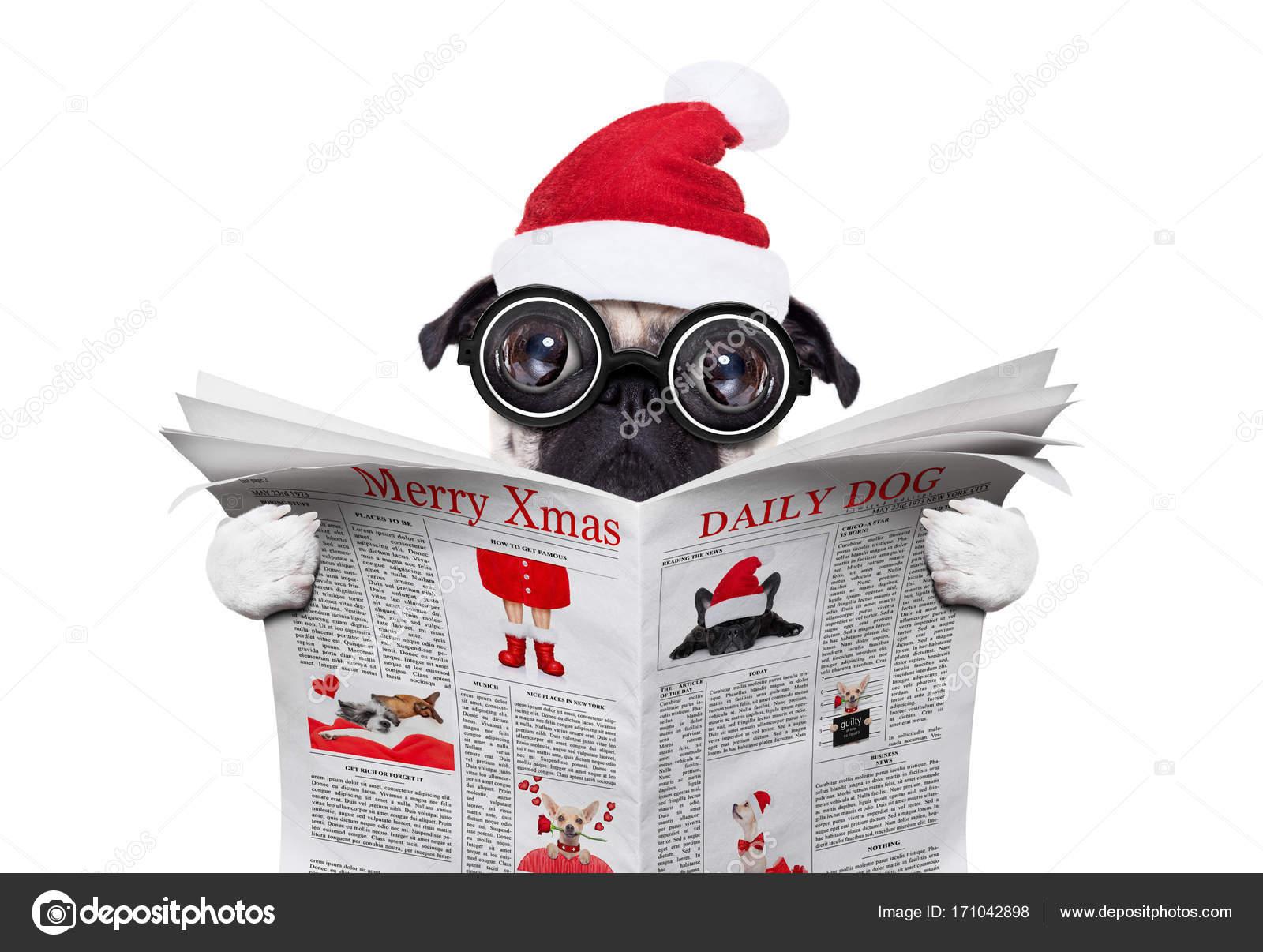 Employé de bureau lisant le journal sur les vacances de noël pour