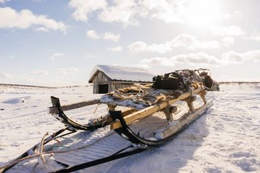 in the far north on a snow-covered field there is a sled