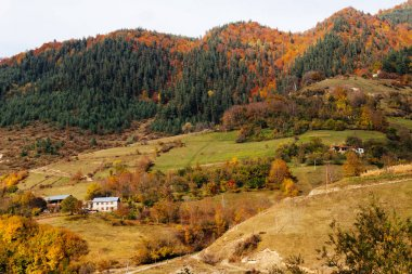 magic nature, majestic mountains, slopes and hills are covered with green and yellow trees, green fields and small houses