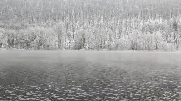 Mlhavé zimní ráno na řece Vltavě