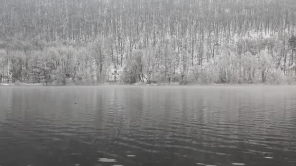 Mlhavé zimní ráno na Vltavě, Česká republika