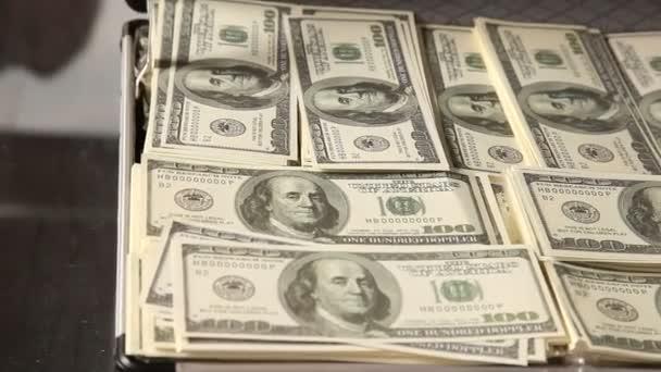 Americká měna dolarů