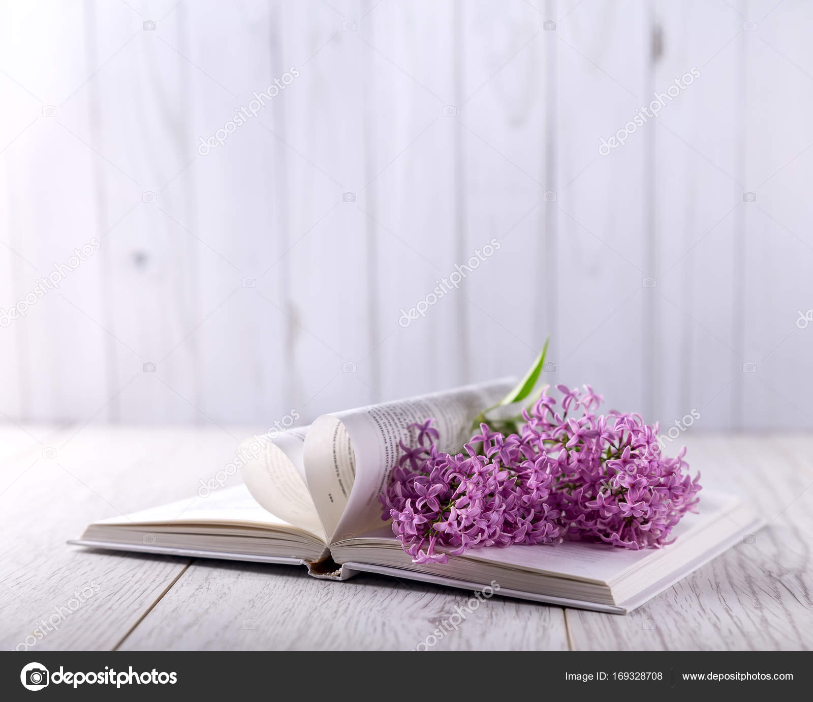 Lilac Flowers Book Open Book Table Flowers Book Table Light Stock