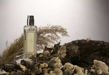 perfume bottle on a wood background in beige brown