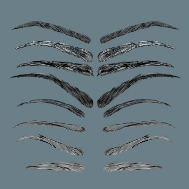 Types and Forms of Eyebrows vector. Eeybrows Vector. Eeybrows Icon. Female Eyebrows in different Shapes.
