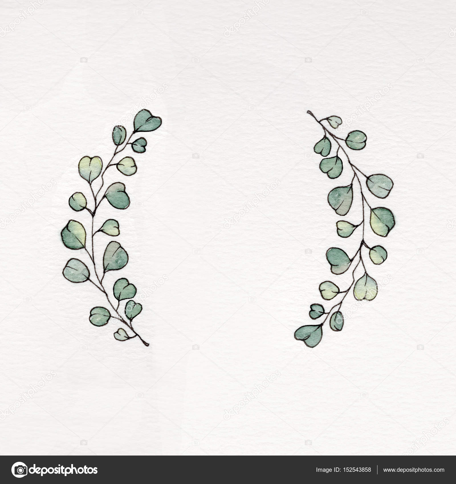 Acuarela guirnalda con hojas de eucalipto — Fotos de Stock ...